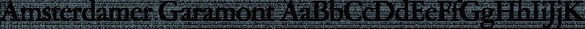 Amsterdamer Garamont font family by FontSite Inc.