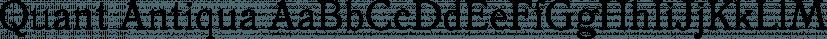 Quant Antiqua font family by ParaType