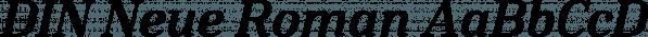 DIN Neue Roman font family by Calligrafiction