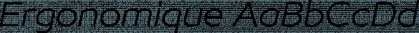 Ergonomique font family by Paulo Goode
