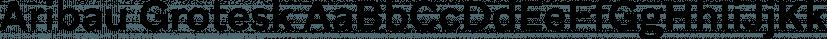 Aribau Grotesk font family by Emtype Foundry