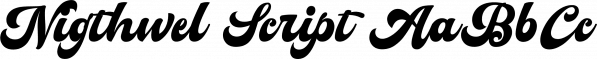 Nigthwel Script font family by Picatype Studio