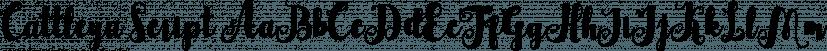 Cattleya Script font family by Genesislab