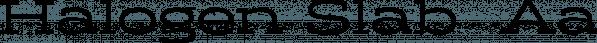 Halogen Slab  font family by Positype