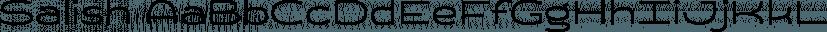 Salish font family by Saja TypeWorks