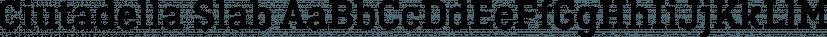 Ciutadella Slab font family by Emtype Foundry