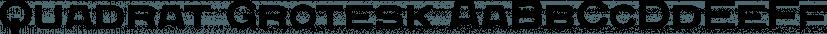 Quadrat Grotesk font family by ParaType