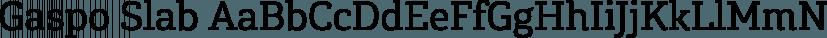 Gaspo Slab font family by Latinotype