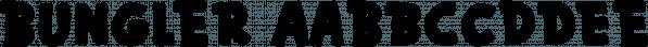 Bungler font family by Bogstav