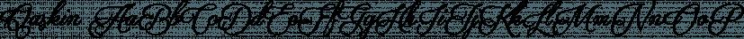 Qaskin font family by Måns Grebäck