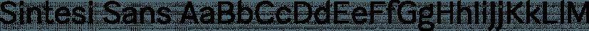 Sintesi Sans font family by FSdesign