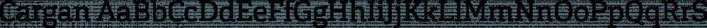 Cargan font family by Hoftype