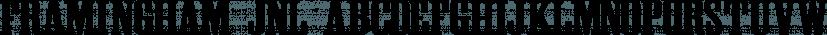 Framingham JNL font family by Jeff Levine Fonts