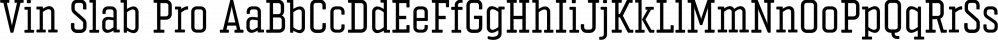 Vin Slab Pro font family by Mint Type