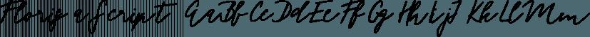 Florisa Script font family by Tabitazn