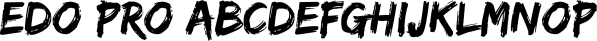 Edo Pro font family by CheapProFonts
