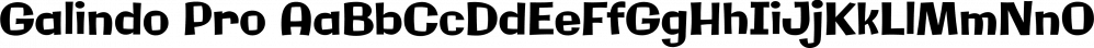 Galindo Pro font family by Stiggy & Sands