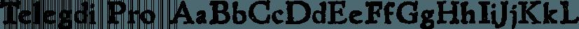 Telegdi Pro font family by International House of Fonts