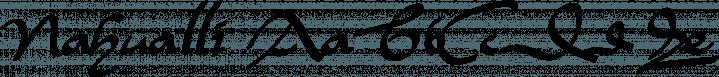 Nahualli font family by Ixipcalli