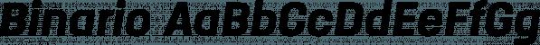 Binario font family by Tarallo Design
