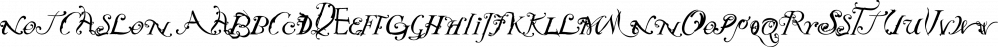 NotCaslon font family by Emigre