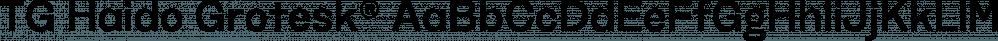 TG Haido Grotesk® font family by Tegami Type