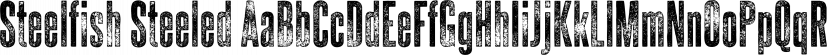 Steelfish Steeled font family by Typodermic Fonts Inc.