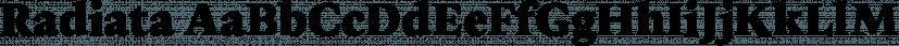 Radiata font family by Untype