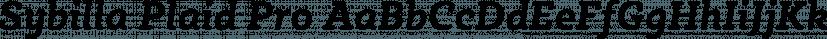 Sybilla Plaid Pro font family by Karandash