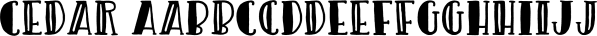Cedar font family by AughtFive