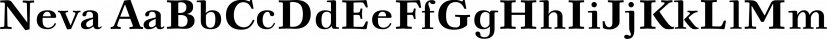 Neva font family by ParaType