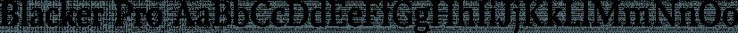 Blacker Pro font family by Zetafonts
