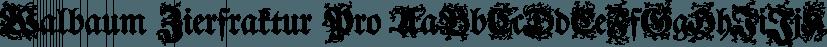 Walbaum Zierfraktur Pro font family by SoftMaker