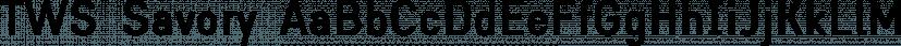 TWS Savory font family by Ten Waffle Studio