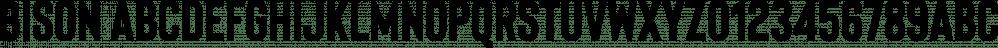 BISON font family by Ellen Luff