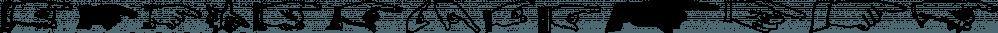 Point Taken JNL font family by Jeff Levine Fonts