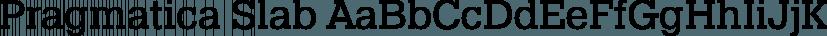 Pragmatica Slab font family by ParaType