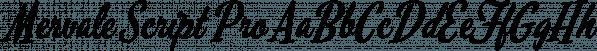 Mervale Script Pro font family by Stiggy & Sands