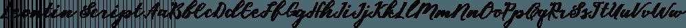 Leontin Script font family by Genesislab