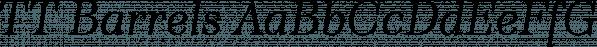 TT Barrels font family by Typetype