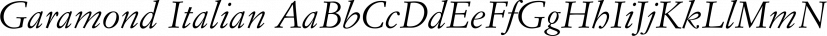 Garamond Italian font family by FontSite Inc.