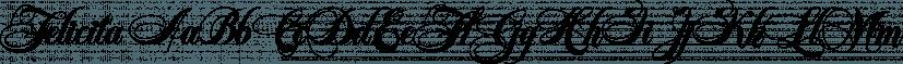Felicita font family by Wiescher-Design