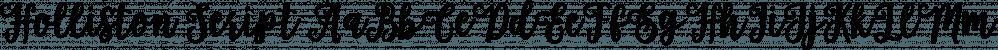 Holliston Script font family by Genesislab