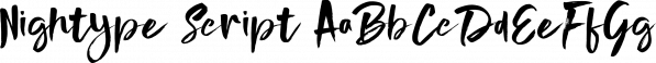 Nightype Script font family by madeDeduk