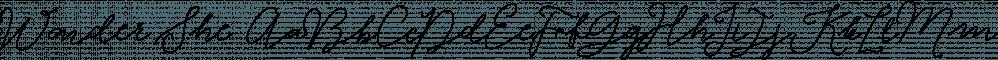 Wonder She font family by Genesislab