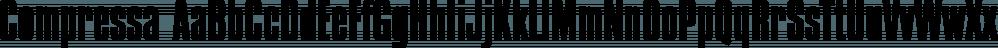 Compressa font family by FontSite Inc.